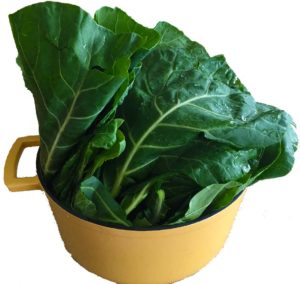pot-collards-empty